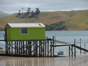 Beach sheds on the Otago Peninsula